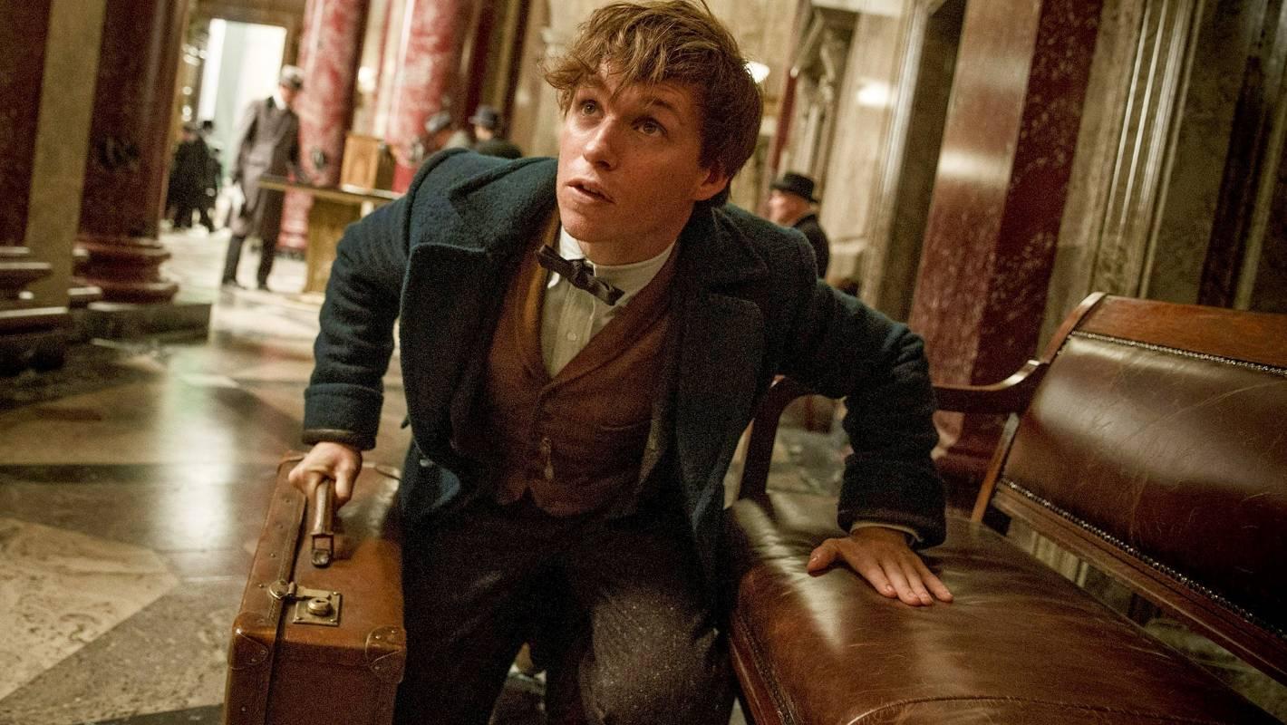 Eddie Redmayne Finds Creature Comfort On Set Of Jk Rowlings