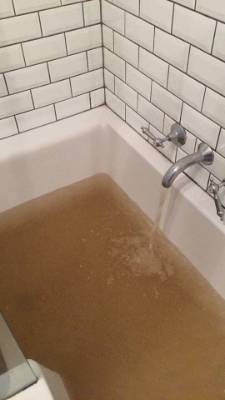 Dirty tap water from a home in Brooklyn, Wellington.