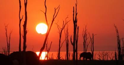 Sunset over Lake Kariba,  few if anywhere does a better sunset.