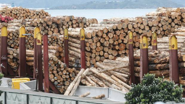 Logs on the Wellington waterfront scattered from their usually neat piles.