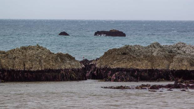 Rocks at Ward Beach.