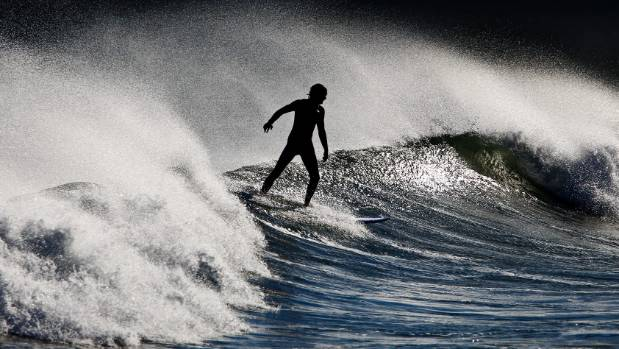 The survey hopes to find out what kinds of boards surfers around the country ride.