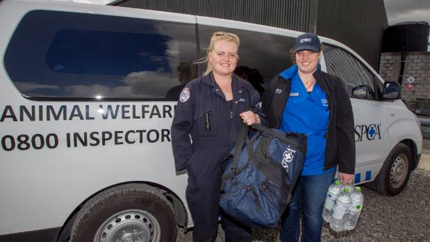 Gina Kemp, left, and Alanna Francois are two of the seven Wellington SPCA workers travelling to Kaikoura.