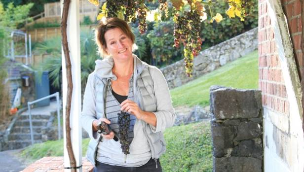Angela Sparks picks grapes from the pergola of her Mt Eden home.