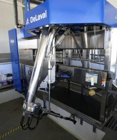 A DeLaval milking bail. There are six of them in the Reid's robotic operation.