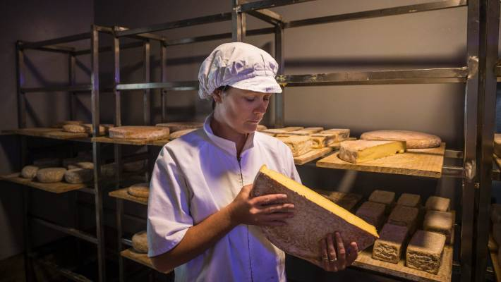 Kaikoura Cheese owner urges Government to extend business