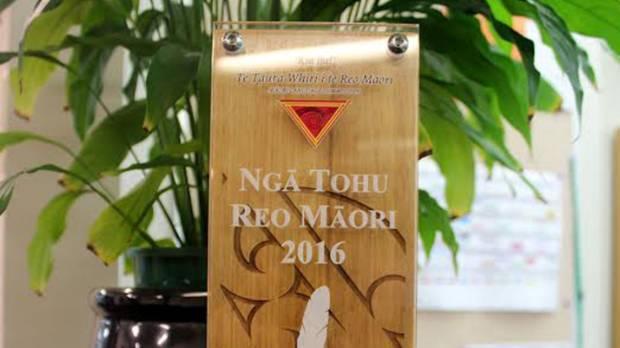 The South Waikato District Council's Kaunihera a-Rohe (Local Government) award.