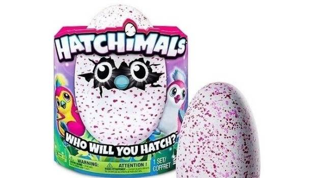 Hatchimals are interactive  creatures inside eggs. You help them hatch, then take care of them.