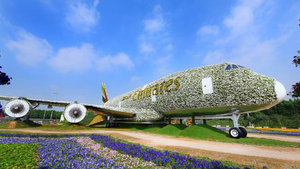 Emirates and Dubai Miracle Garden build world's largest floral installation in shape of an Emirates A380.