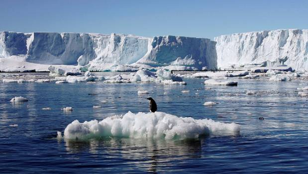Climate change is having a serious effect in the Antarctic.