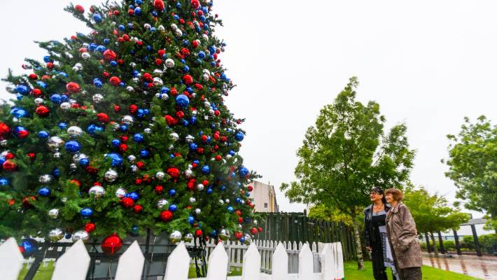 Christmas Trees And Festive Lights Spring Up As Big Day