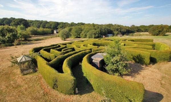 The maze hedges are nearly 2.5m high, so you can't peep over the top when you get lost.