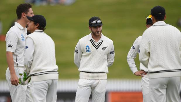 Kane Williamson consults his team-mates.