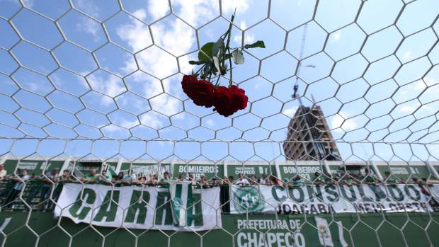 A flower is pictured in a net of the Arena Conda stadium in tribute to the players of Chapecoense football team.