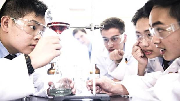 Some of the year 11 boys at Sydney Grammar School who have made an anti-malarial drug for A$2 a dose.