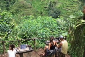 Bali Pulina Plantation has picturesque views.