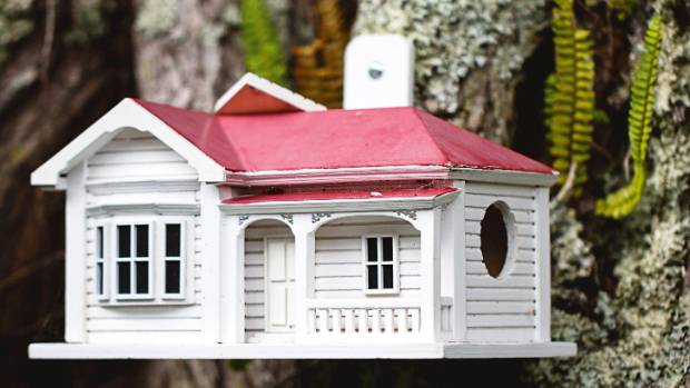 A bird house in the pohutukawa resembles the Waymouths' home, built in 1910.
