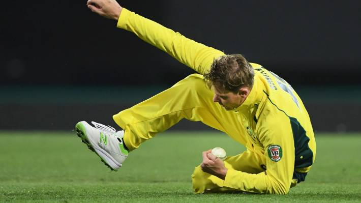 Australian captain Steve Smith about to return to his feet after securing a  diving catch to 266249983