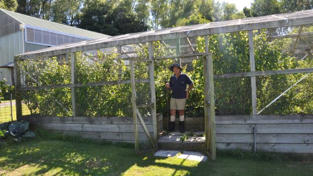 A purpose-built berry house is a dream for many gardeners.