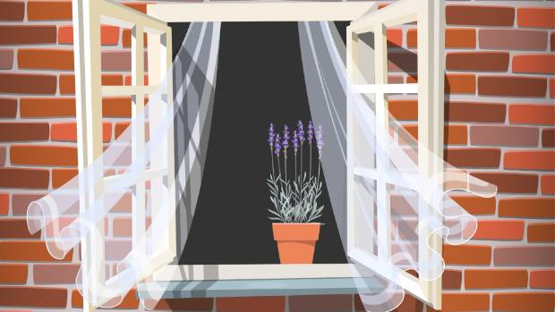 Should You Close Your Curtains At Night If Passersby Can See Into
