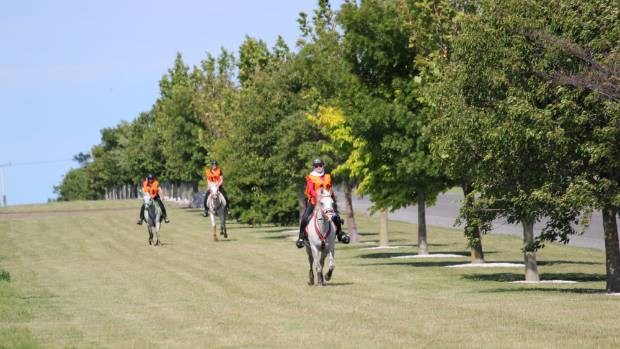 Endurance riders, from left, Alison Higgins, Shantalle Geurtjens and Linda Harmon, head out along the grass verge on ...