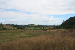 Farmers on the Hauraki Plains will have to adopt good management practices if they are to meet the Sea Change marine ...