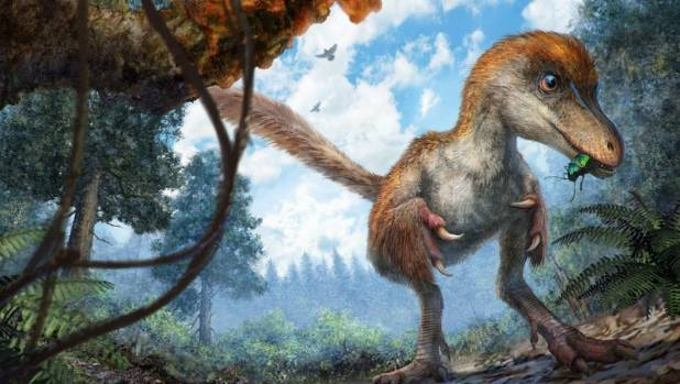 99-Million-Year-Old Dinosaur Feathers Found In Amber
