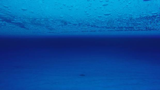 Underwater picture of englacial lake 4m below the surface of the Roi Baudouin ice shelf, East Antarctica.