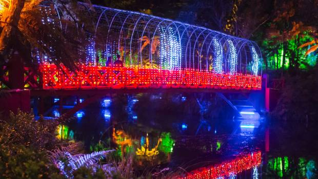 Pukekura Park packed with piles of people for Festival of Lights |  Stuff.co.nz - Pukekura Park Packed With Piles Of People For Festival Of Lights