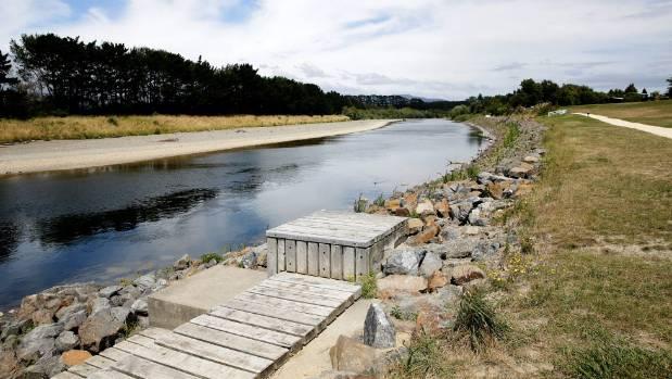The Manawatu River near Dittmer Drive.