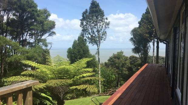 The view from McGregor's house in Titirangi, west Auckland.