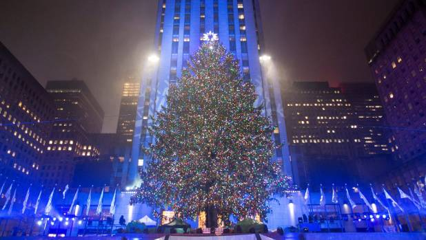 The Christmas tree stands lit after the lighting ceremony for the 84th annual Rockefeller Center Christmas Tree in Manhattan.
