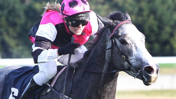 New Zealand jockey dies in race fall