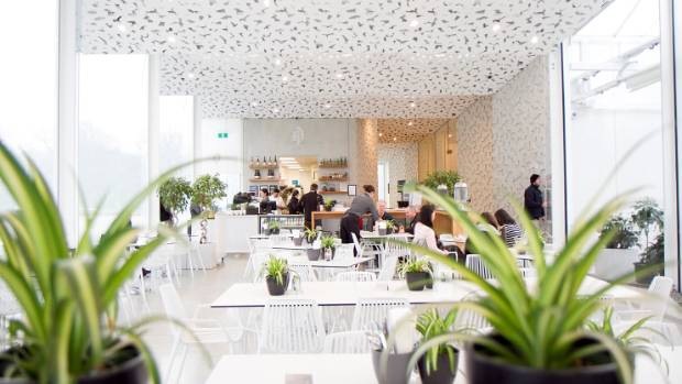 Ilex Cafe is airy, light and uplifting.