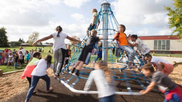 It's important children can play in an environment that challenges them, Newtown principal Mark Brown says.