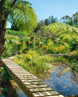 """The reclaimed pond and wetland area has a boardwalk leading to an island: """"The island was created because there was a ..."""