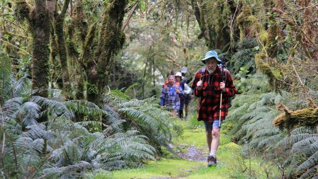 Otago Tramping Club member John Armstrong on the Milford Track, one of the Great Walks. Privatising these routes would ...