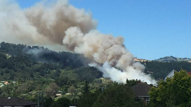 Cause of fire on Dunedin's Signal Hill remains unknown