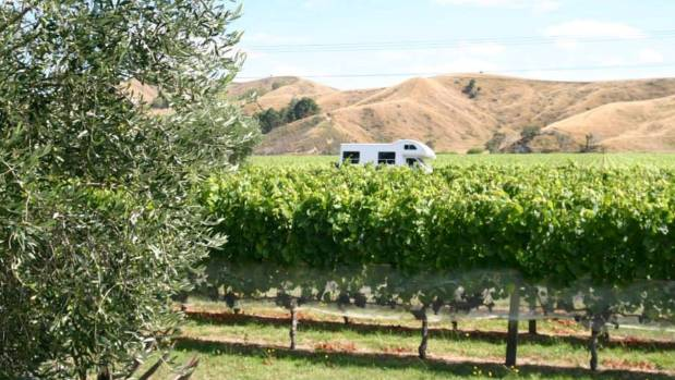 Vineyards, olive groves and other artisan food producers are among those welcoming freedom campers.