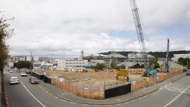 The council plans to partner with private developers to build houses in the city. The concept is being trialled with the ...