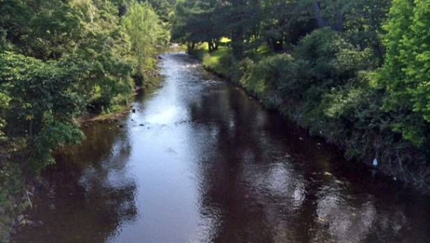 Wainuiomata River has been judged the most improved river in the Wellington region.