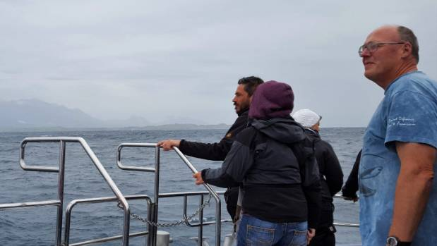 Tourists and locals alike enjoy the first Whale Watch Kaikoura tour since the November 14 earthquake.