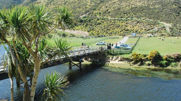Restoring plant species that native fish need to breed in the Wainuiomata River was part of a plan to restore the entire ...