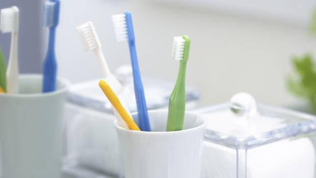 Your toothbrush holder may be a haven for germs.