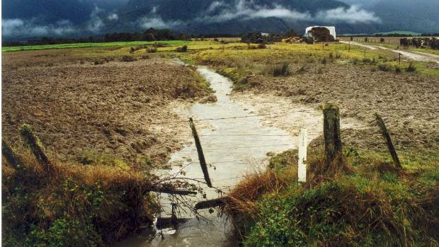 A stream in North Canterbury which Fish and Game Council  claim is polluted by by dairy farming.
