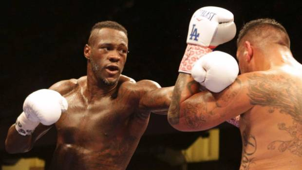 American Deontay Wilder's size and power have seen him dominate the WBC rankings.