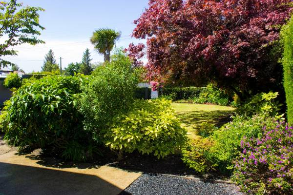 Viv Leigh has worked wonders in the garden.