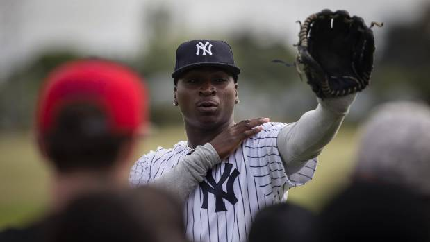 "New York Yankees shortstop Didi Gregorius said his career is proof ""you can go a long way with baseball""."
