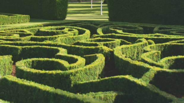 "When Alan Trott decided he was ""sick of roses"", they were replaced with traditional knot gardens."