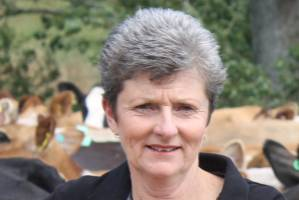 Karen Forlong credits a lot of her growth and personal wellbeing to being part of the Dairy Women's Network.